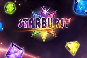 starburst baumbet casino